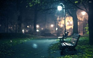 20992-bench-in-the-dark-park-2560x1600-photography-wallpaper