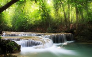 27711-small-forest-waterfall-2880x1800-nature-wallpaper